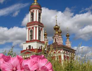 View of flowers at the background church and sky, Vladimir region, Russia